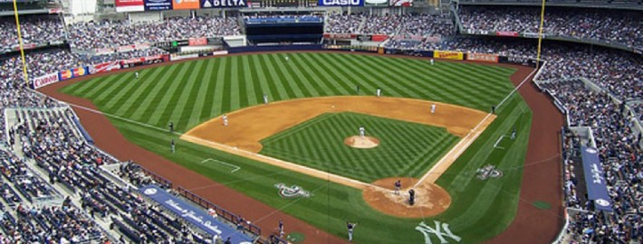 Burma Red Hilltopper Warning Track Mix - Yankee Stadium - New York, NY
