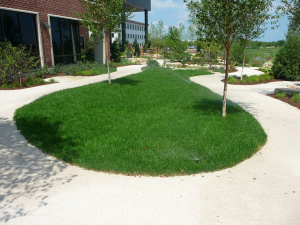 Botticino Marble Stabilized Pathway - Midwest Palliative & Hospice - Glenview, IL
