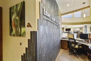 Ebony Basalt 3D Panels by Norstone