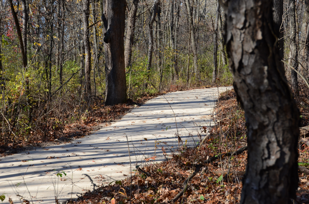 Beige Blend Marble Wax Polymer Pathway - Deer Grove Forest Preserve - Palatine, IL
