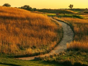 Custom Erin Hills Blend Wax Polymer Pathway - Erin Hills Golf Course - Hartford, WI - Photo courtesy of Paul Hundley